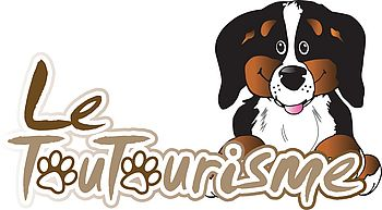 Le Toutourisme : pour des vacances sympas avec votre animal de compagnie !