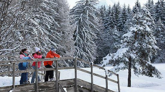Nordic skiing at the Bayard estat
