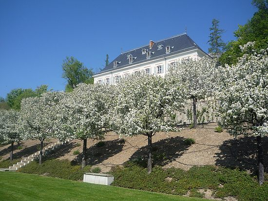 Orchards in Charance