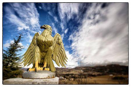 Eagle of the Napoleon Road